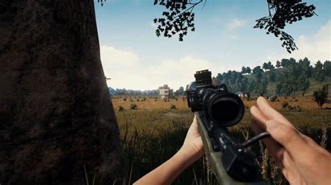 pubg   play    person game mode
