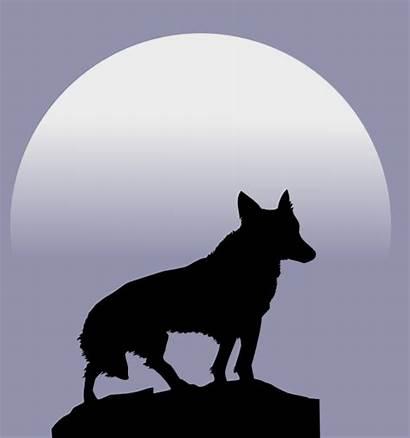 Wolf Smaller Clip Clker Clipart Vector Royalty