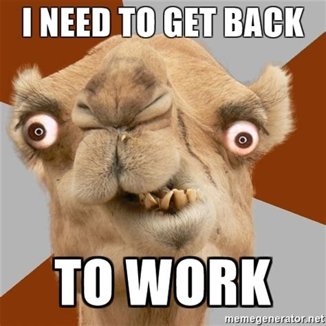 Get To Work Meme - get back to work memes