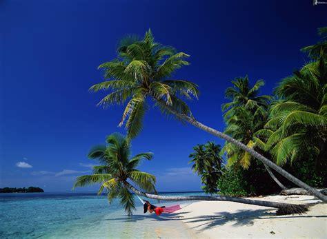 amaca sul mare palma sul mare