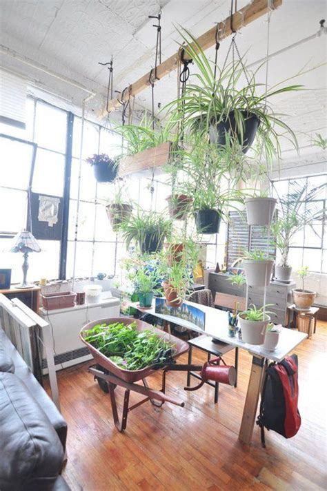 carlos custom diy loft room  plants indoor garden