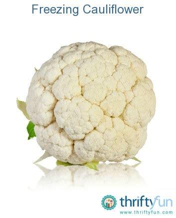 how to freeze cauliflower freezing cauliflower fancy1 jpg