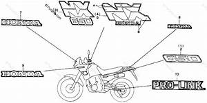 Honda Motorcycle 1988 Oem Parts Diagram For Stripe