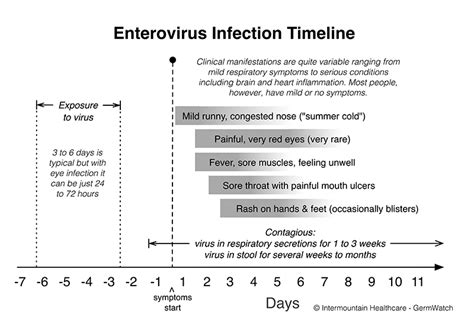 Enterovirus  Intermountain Healthcare. Best Refinance Rates 30 Year Fixed. Fraser Place Central Seoul Residence. Windows Terminal Server Hosting. Cable Company In Miami Moving Company Raleigh. Moving Companies Yonkers Ny Best Plane Seats. Laminate Wood Flooring Miami. Make A Website For A Business. Background Employment Check List Proxy Sites