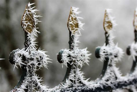 picture fence snowflake iron steel metal frost