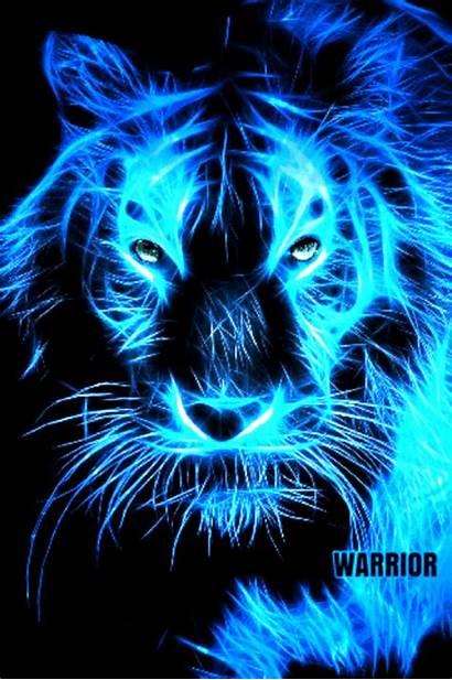 Wild Animals Lionesses