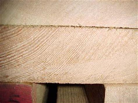 douglas fir platten oregon pine aus arnheim am niederrhein