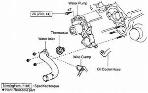 Schematics And Diagrams  Toyota Water Pump Replacing For 3