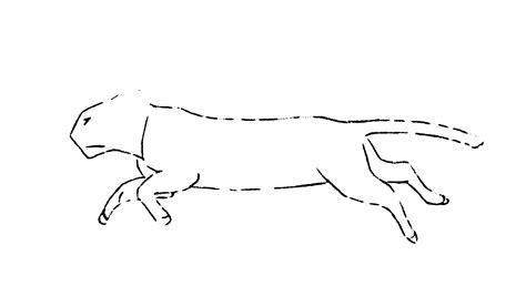 Cat Running Animation Test By Lizzarddraws On Deviantart