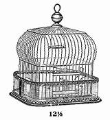 Cage Coloring Bird Pages sketch template
