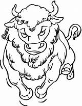 Coloring Buffalo Bison Head Drawing Face Animals Getdrawings sketch template