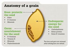 Moveable Feast Blog  Whole Grains   More Gain