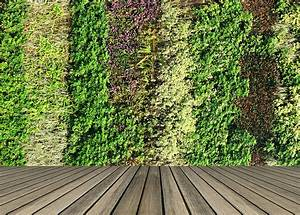 Green, Walls, And, Roofs, Online, Course