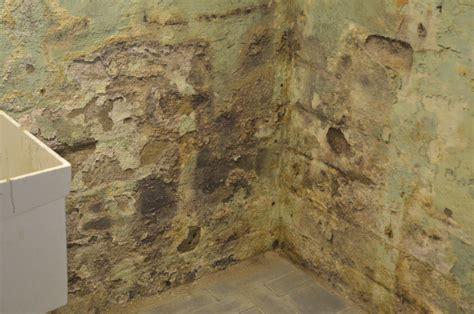 Mildew In Basement Dangerous — New Basement And Tile