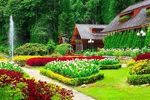 Gardens Tulips Houses Shrubs Grass Nature wallpaper ...