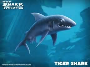 Hungry Shark Evolution Tiger