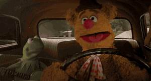 The Muppets Friends GIF by Disney - Find & Share on GIPHY