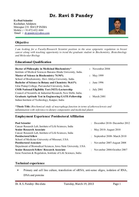 Create Resume Sle by Domestic Helpers Essay Wexford Crafts Ltd Paper