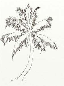 How to draw coconut tree 2.jpg (600×800) | Trees | Pinterest