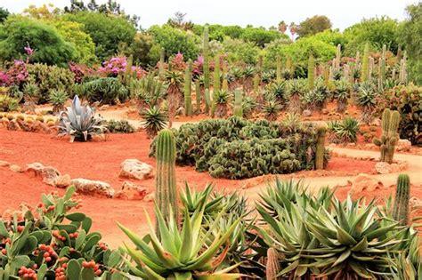 Der Botanische Garten Botanicactus Von Mallorca