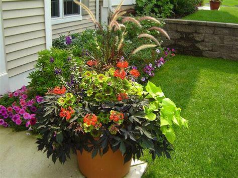 Container Gardening  Gardening Pinterest