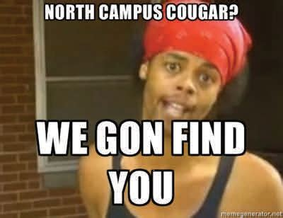 Cougar Memes - cougar memes the all nighter