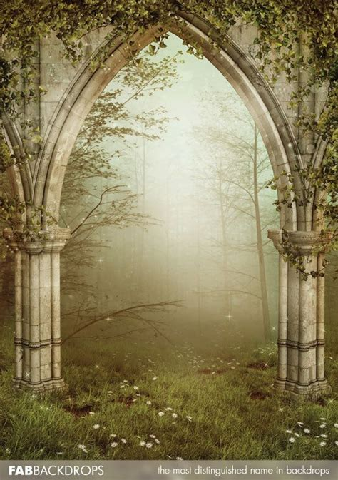 fabvinyl archway  enchanted fairy forest backdrop