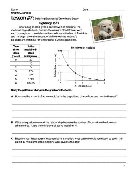 graphing exponential growth and decay worksheet free