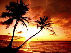 Tropical Beach Paradise Sunset Hd Desktop 10 HD Wallpapers ...