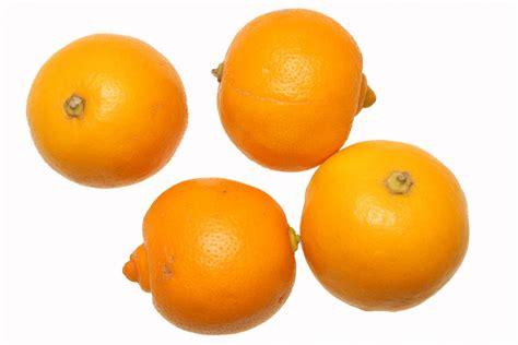 recette de cuisine petit chef bergamote fruits