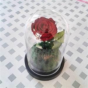 Rose Eternelle Sous Cloche : rose ternelle la belle roses ternelles fleur naturelle stabilis e rose ternelle rose ~ Teatrodelosmanantiales.com Idées de Décoration
