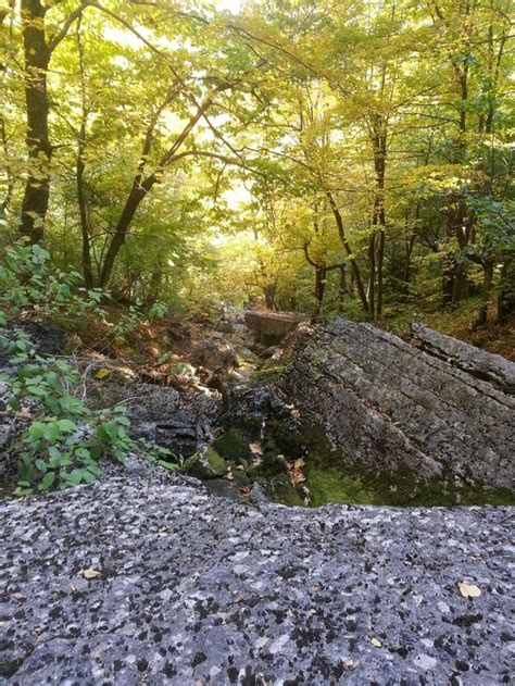 Bottom Of Fat Mans Misery Thacher Park Albany