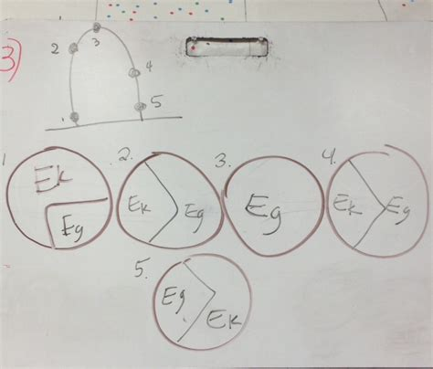 pie graph worksheets with answers circle graphs