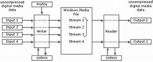 Inputs  Streams  And Outputs  Windows