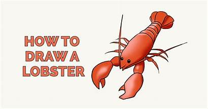 Lobster Draw Drawing Easy Animal