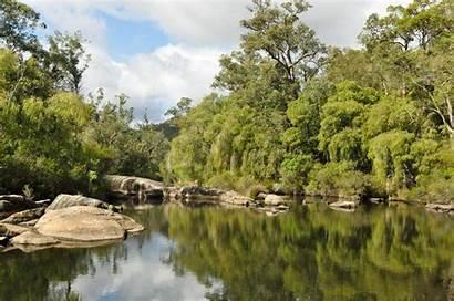 Collie River Park National Wa Rac Save