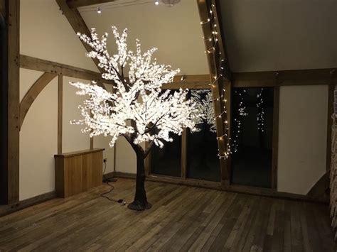 sandburn hall led blossom leaf tree wedding venue