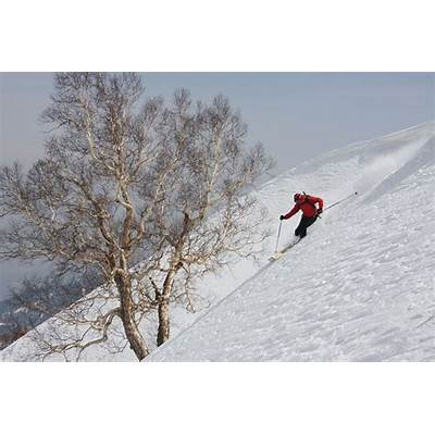 Gulmarg Skiing Tour
