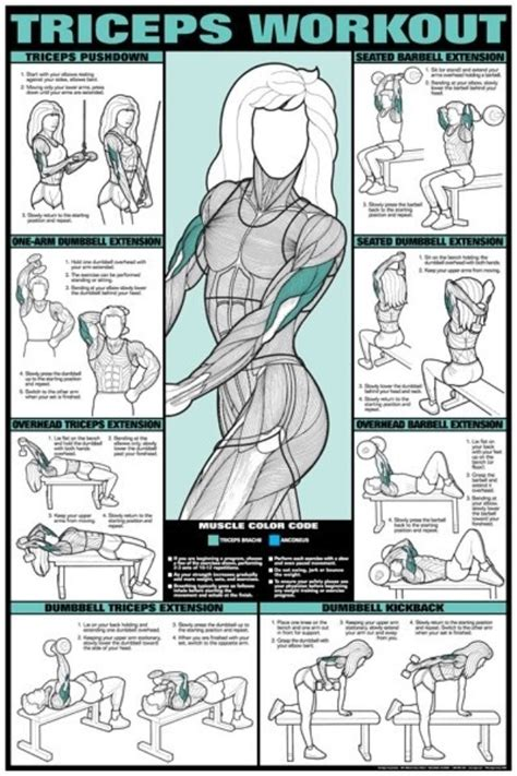 Triceps workouts | Fitness and health | Pinterest | Charts