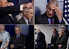 PRESIDENT TESTS POSITIVE FOR FAUCI ENVY   I'm Mad Too, Harry.