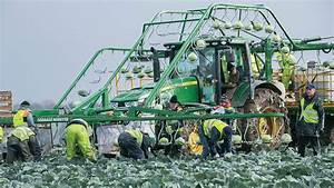 The farming industry's reliance on migrant labour - from ...