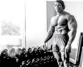 Arm and Shoulder Workout Arnold