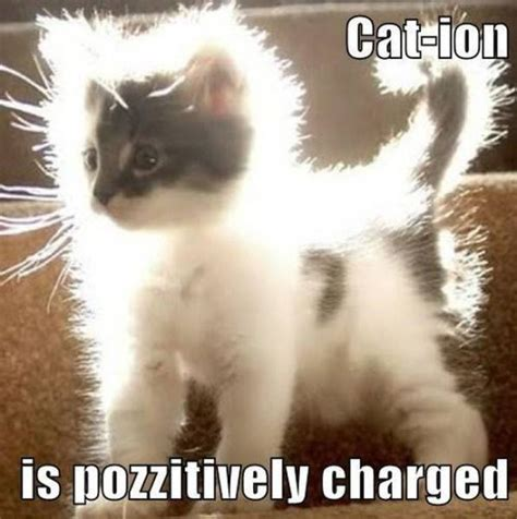 Nerdy Science Memes That Are Actually Kind Of Funny 40
