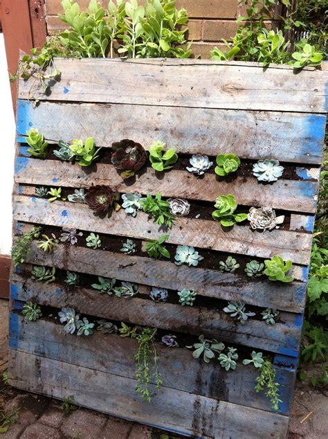 Vertical Succulent Garden by Top 10 Diy Vertical Garden Ideas To Try This Top