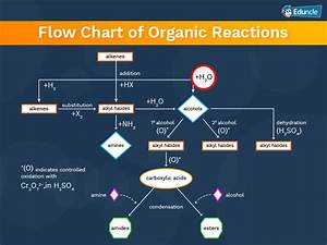 Reaction Mechanism Chart Organic Chemistry Iit Jee Chemistry 2020 Main Advanced Tips Notes