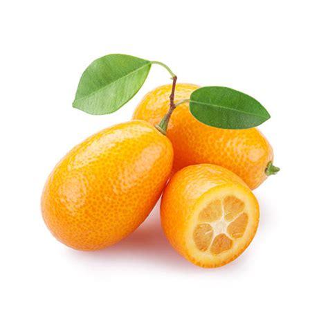 soja cuisine recettes acheter kumquat fruits exotiques direct de l 39 agriculteur