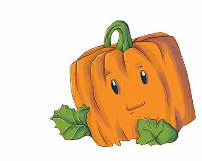 Pumpkin Spookley Clipart Square Sprinkles Cookie Frosted
