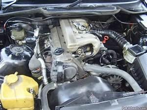 Bmw 316i  E36  For Sale - Cars
