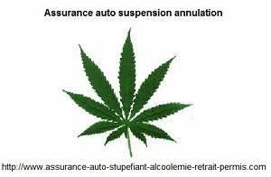 Assurance Auto Alcoolémie 3 Ans : assurance moto suspension permis stupefiant cannabis ~ Medecine-chirurgie-esthetiques.com Avis de Voitures