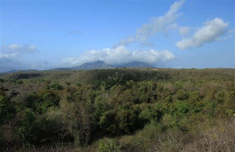 west bali national park wikipedia